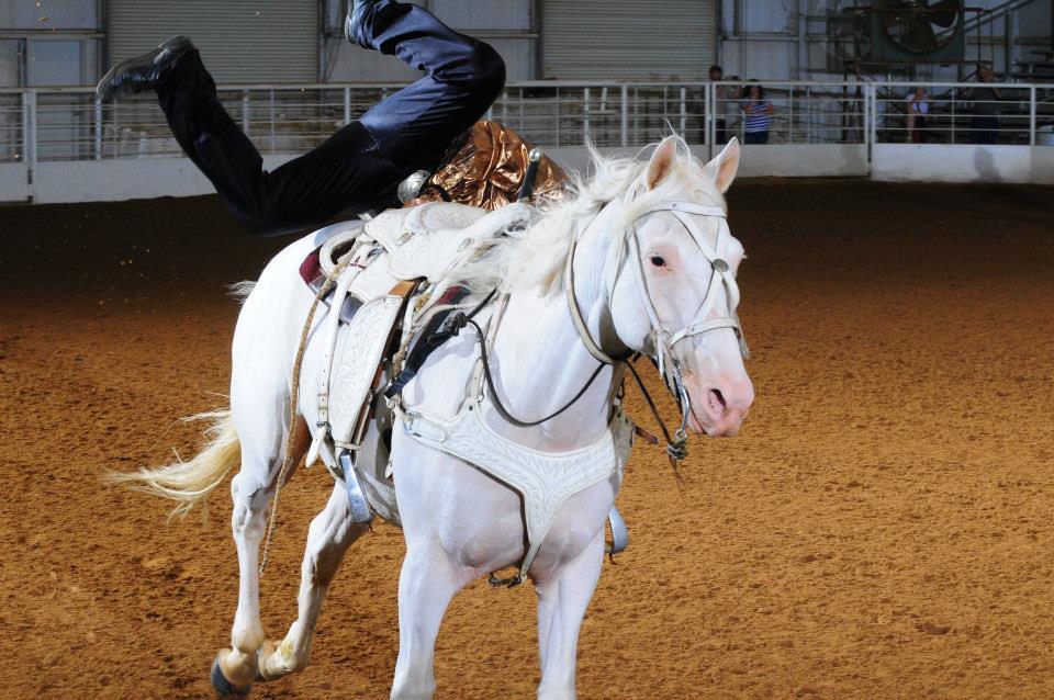 austin anderson trick riding