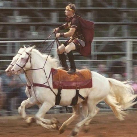 austin anderson roman riding