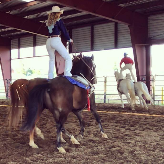 texas trick riders roman riding