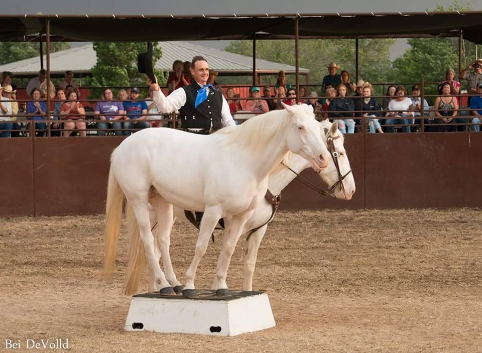horse on pedestal