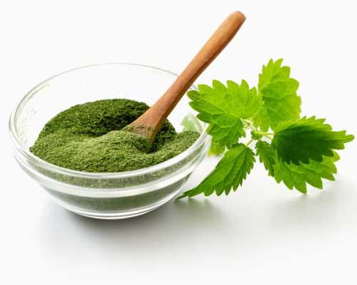"""BRÆNDENÆLDE MEL - Den klorofyl-, mineral- og vitaminrige brændenældeplante har været brugt som medicin siden tidernes morgen. På grund af det store mineral- og især jernindhold er et tilskud af brændenældemel et styrkende middel ved anæmi (blodmangel), nedsat immunforsvar, sprøde negle og glansløst og """"træt"""" hår.Mineralsammensætningen i brændenælde virker desuden stærkt basisk, hvilket betyder, at den også er et godt middel ved podagra, eksem, halsbrand og sur mave. Vores søn har, siden han var baby, fået en teskefuld brændenældemel hver eneste dag som et naturligt jerntilskud. Da vi lever som vegetarer (Martin 100% og Zennie som flexitar) i vores familie og sjældent drikker rødvin, sørger vi for at få ekstra jern gennem kosten. Vi fandt ud af, at brændenældemel er enkelt og brugbart for os, da vores ønske om friske brændenælder ikke helt går i hak med en travl hverdag.Brændenældemel er neutralt i smagen og derfor let at """"skjule"""" for børnene i stort set alle juicer og smoothies."""