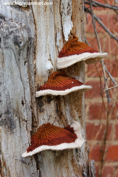 resinous-polypore-682x1024