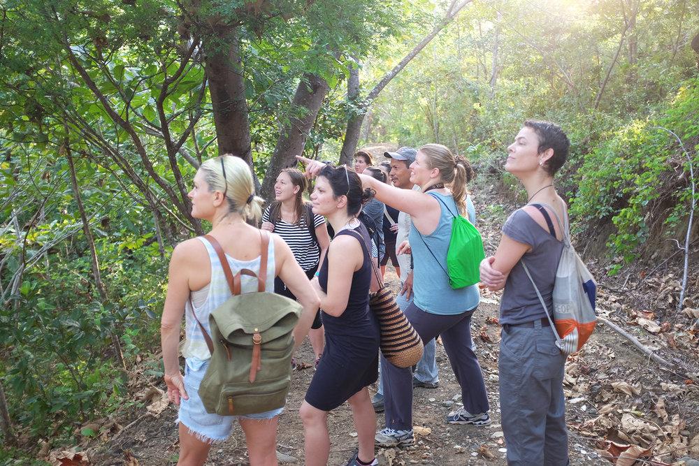 Yoga Ecological Sustainability Tropical Beach Cleanup Retreats Panama Brazil.jpg