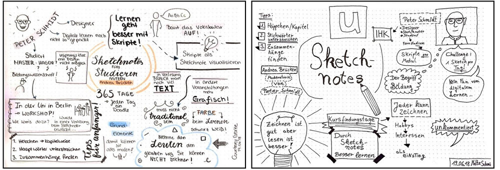 Fig. 8 Exam sketchnotes about an interview of Peter Schmidt on Flow TV by Andrea Brücken.