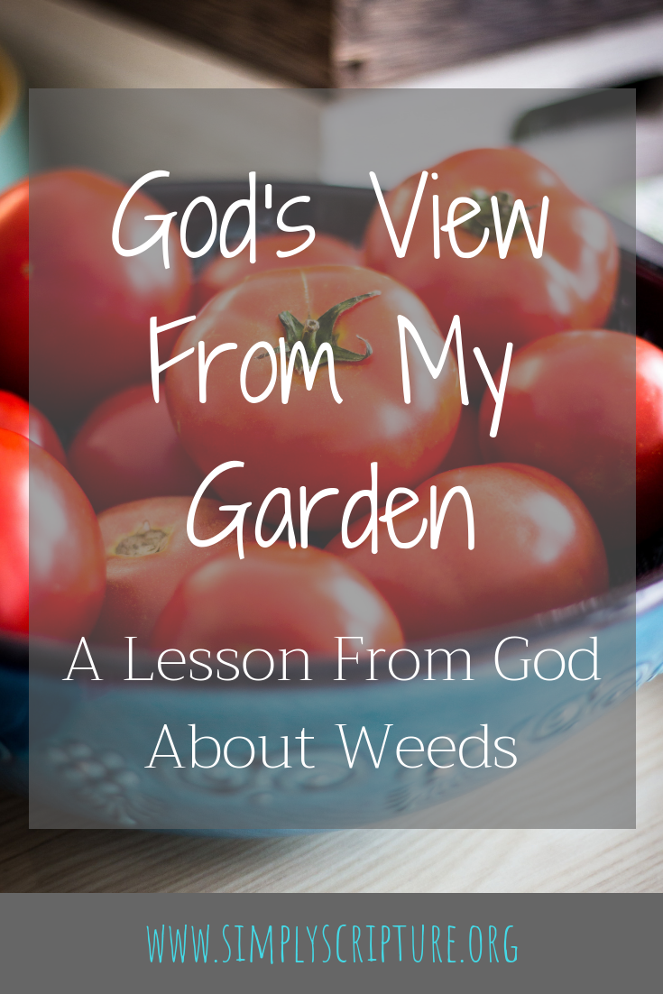 My garden taught me a lot about my heart weeds and how God delights in pulling out sin by the roots.