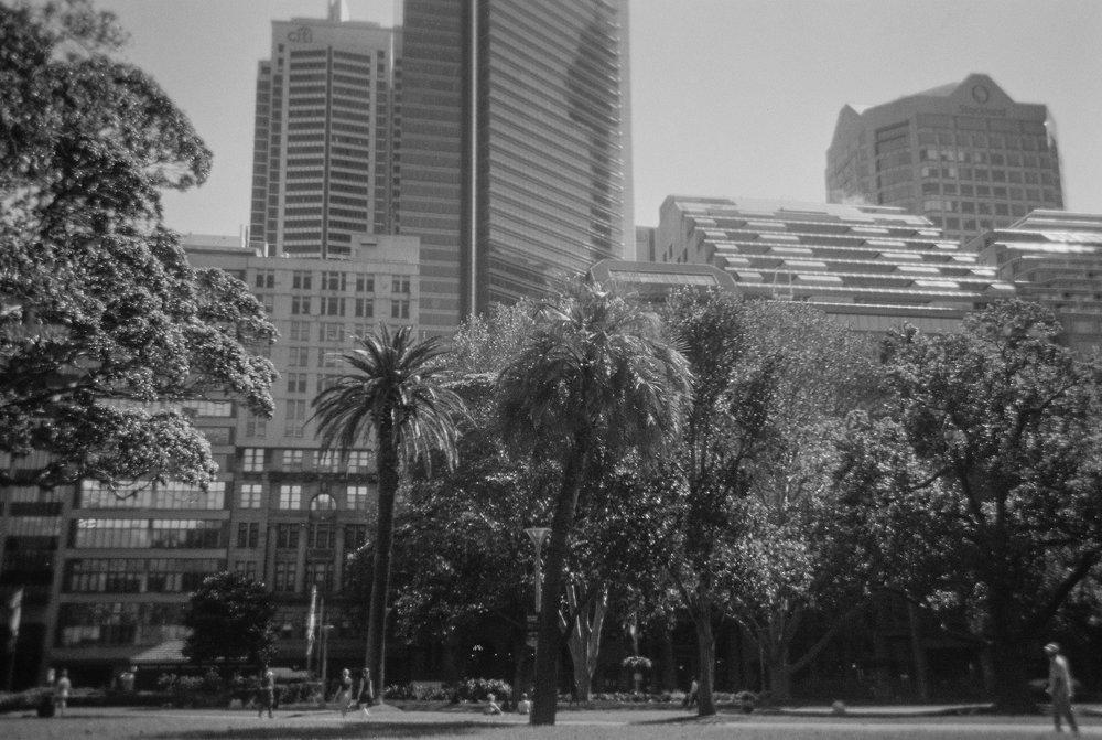 CITY_PARK_VIEW_BW.jpg