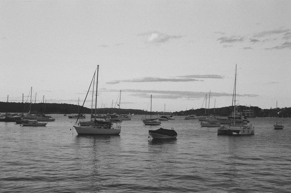 rose_bay_boats.jpg