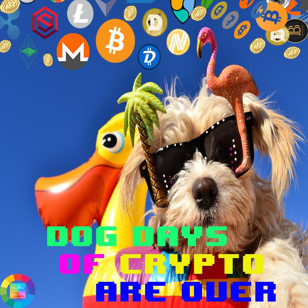 dog-day2s.jpg