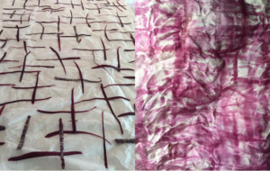 Left – Red Carrot peelings laid on fabric as a natural dye source. Right – the beautiful colour of the finished fabric.