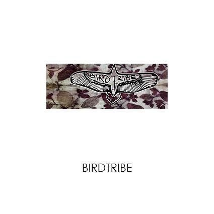 BIRDTRIBE.jpg