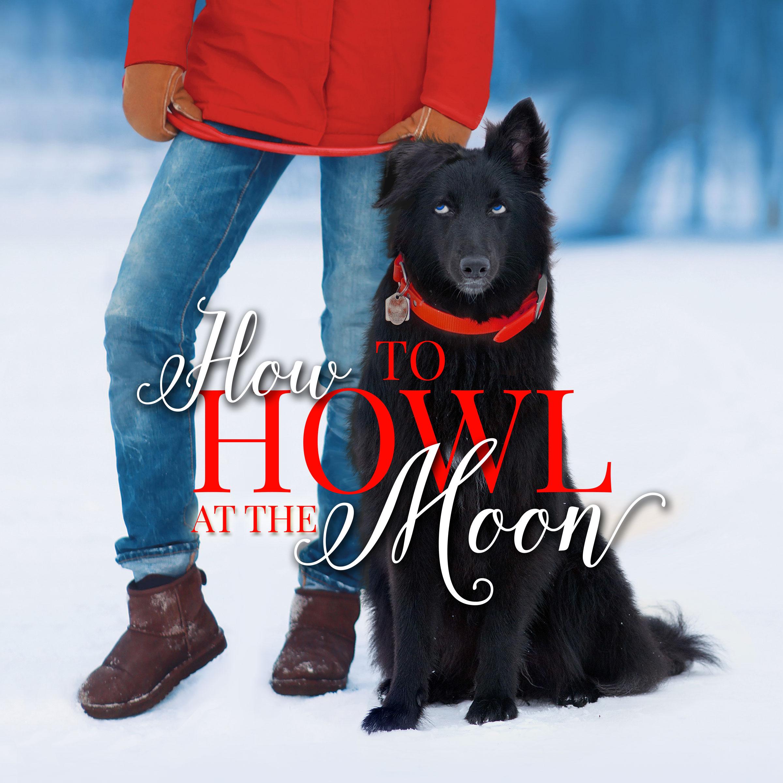 audiobookcover_HowlattheMoon2