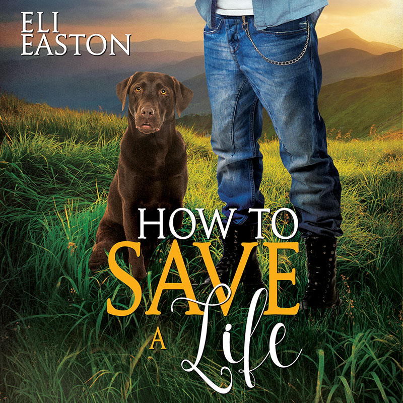 HowToSaveALife-audiobook 800.jpg