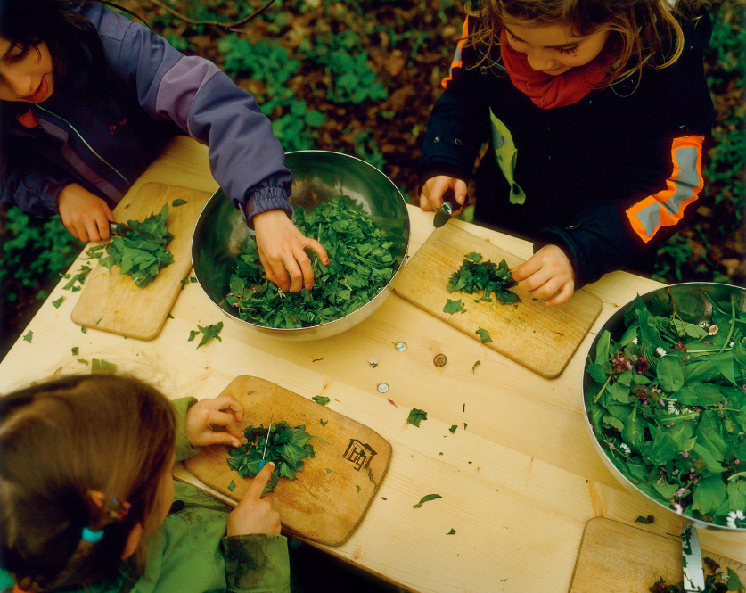 New York Times: Running Free in Germany's Outdoor Preschools
