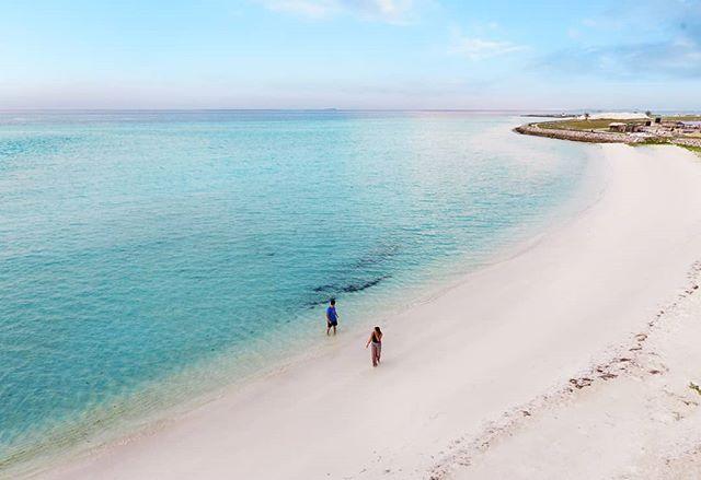 Lost in paradise 💙 @visitmaldives #maldives #maldivessurf #surfmaldives #islandlife #thulusdhoo #island_features ##ocean #krakeninn #sunnyside #maldivesislands #travelmaldives #coralreef #maldivesmania #underwaterphotography #beautifulmaldives #omaldives @maldives @officialmaldives @travelzoouk #maldives_ig #surfblog #surfblogger #atol #surftravel #surflife #oceanlife #mynikonlife #endlessmaldives
