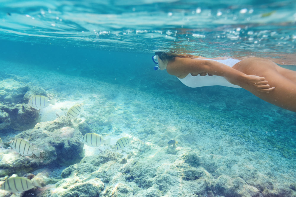 Maldives resort snorkelling