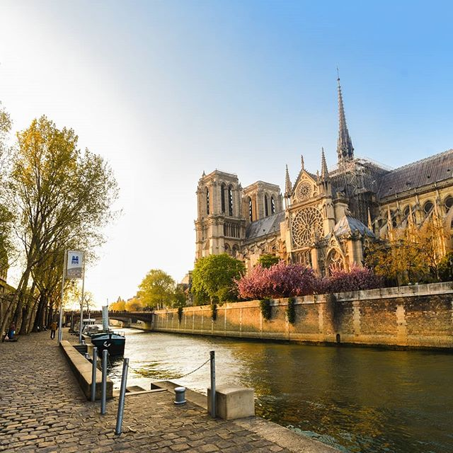 Such heartbreaking news that the Notre-Dame is burning 😢 it's one of my favourite places in Paris and have been walking around there just two days ago when I took this photo ❤️ #notredame #paris #france
