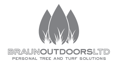 Braun Outdoors / Lawn care Tree Service