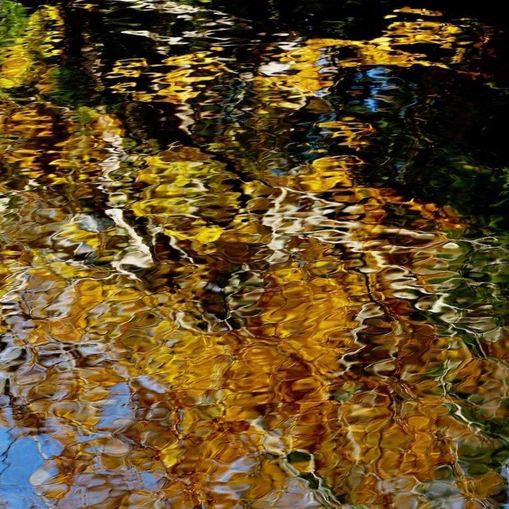 Photo Credit: Allan DiBiase (Dinsmore Pond - Sandwich, NH)