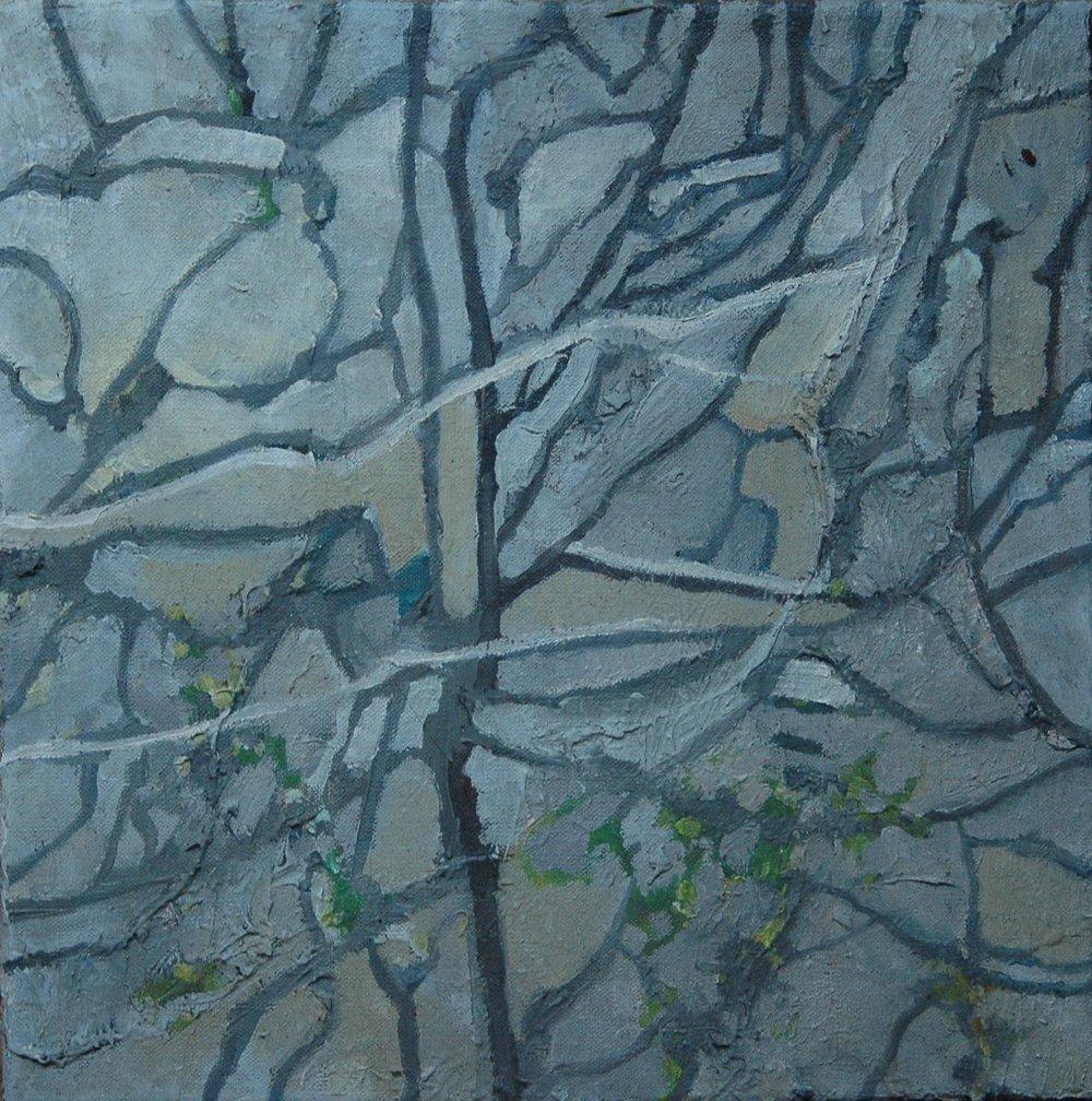 Winter Solstice  (2013)