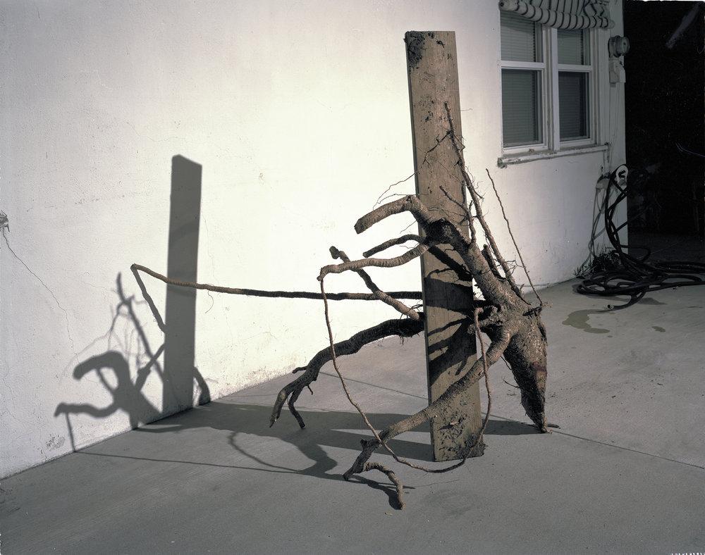 Crutch , 2012 Archival pigment print 40 x 50 inches   ————