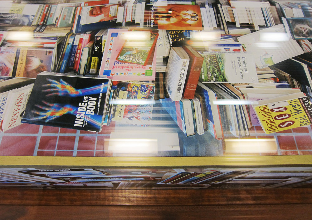 Paper Surrogate, Public Project ,  Los Angeles Central Library  (Detail), 2010 Wood, acrylic paint, and photographs      ————