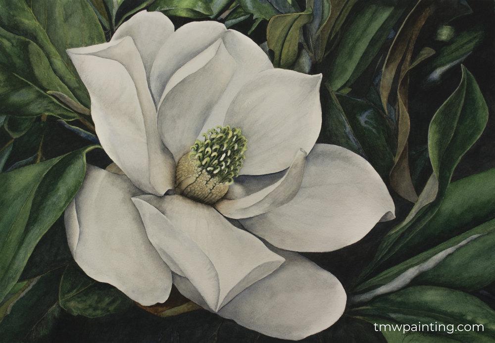 Magnolia sig.jpg