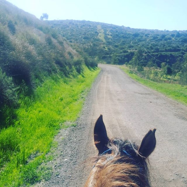 Between supporting families, this doula relaxes with a morning ride! #doulaoffcall #doulaoffduty #doula #doulalove #spdoulas #sandiegolife #ranchosantafe #summer #summerday #smallbusiness