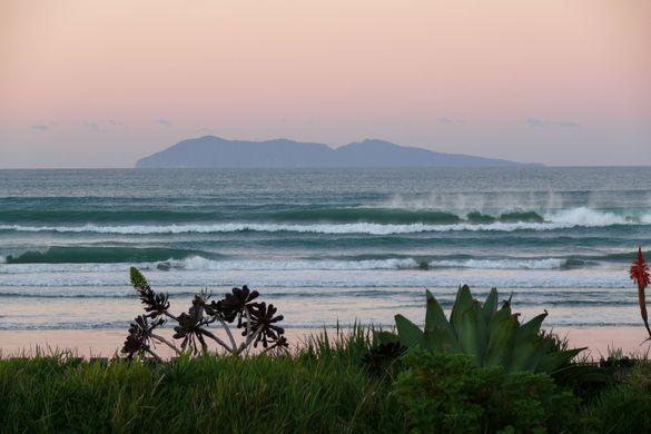Predator Free Waihi Beach - Graeme Morrison  Mbl: 021 045 1027  Email: gmorrison@orcon.net.nz