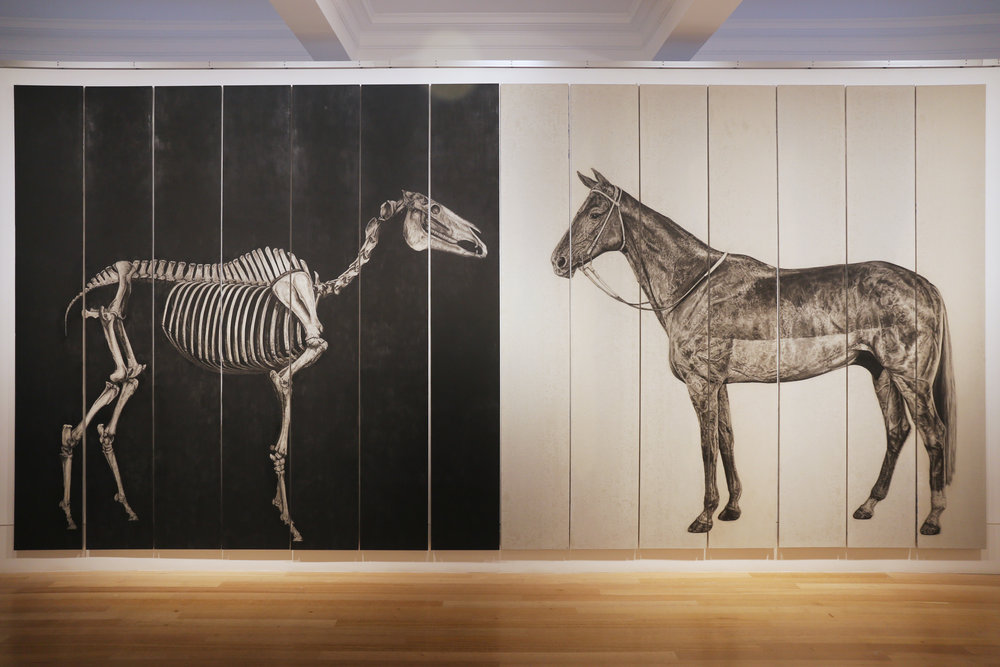 Phar Lap: Bone  &  Phar Lap: Skin  (installation view), 2017 Image courtesy of the artist