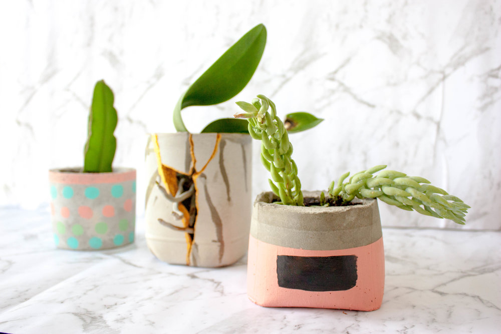 DIY Cement Planter Pots - Kitty Gang