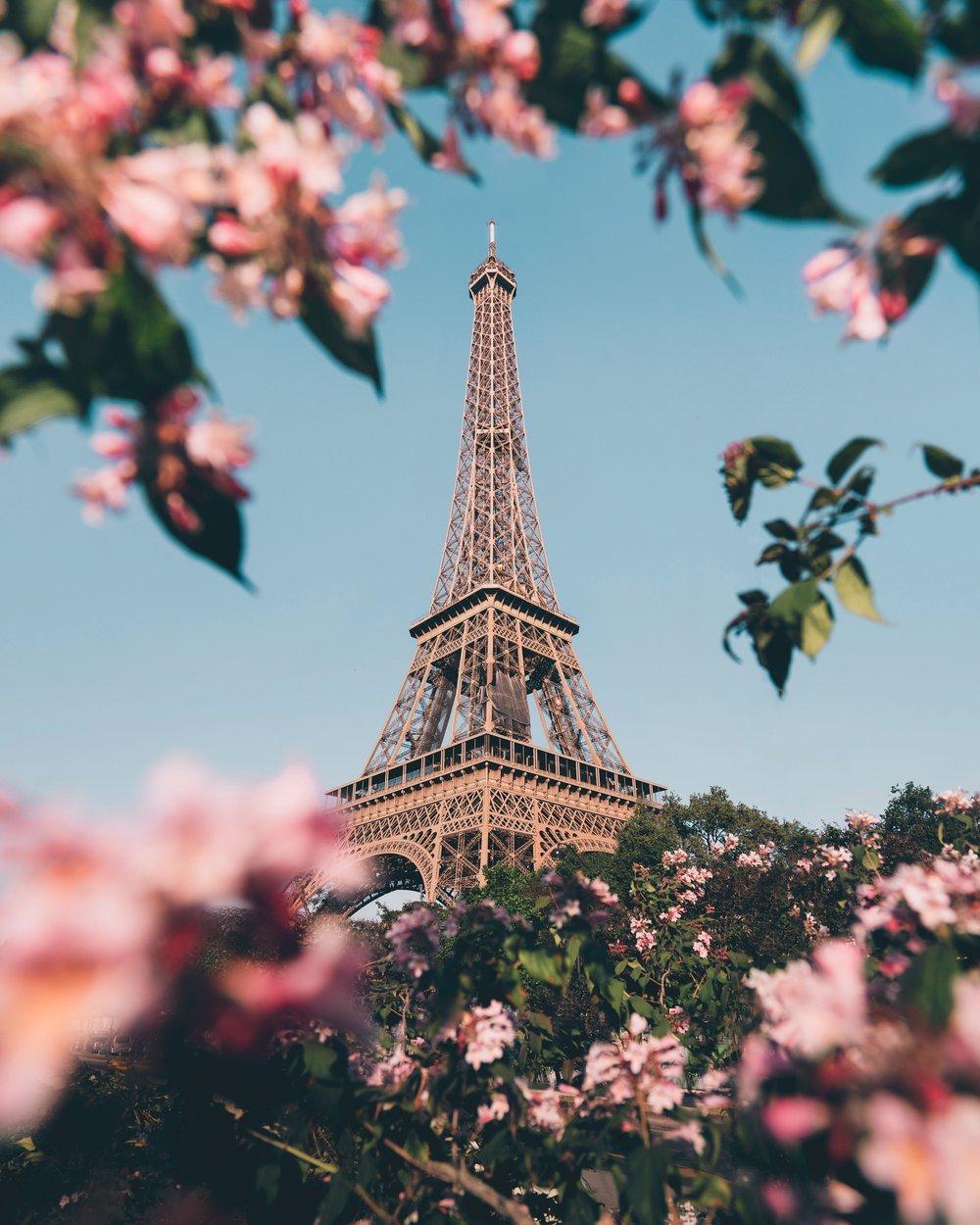 Eiffel Tower Photo by Jack Anstey - Unsplash