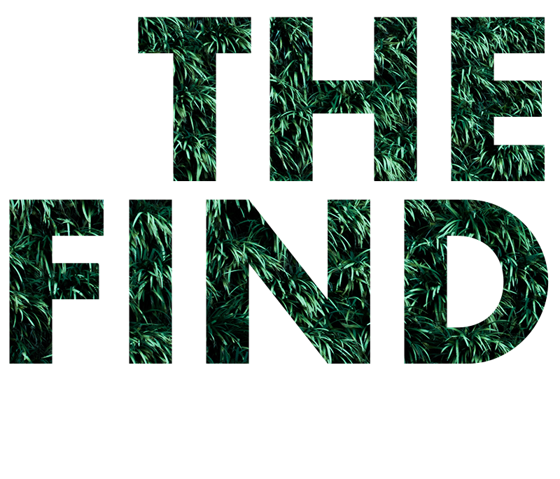 FIND TEXT.png