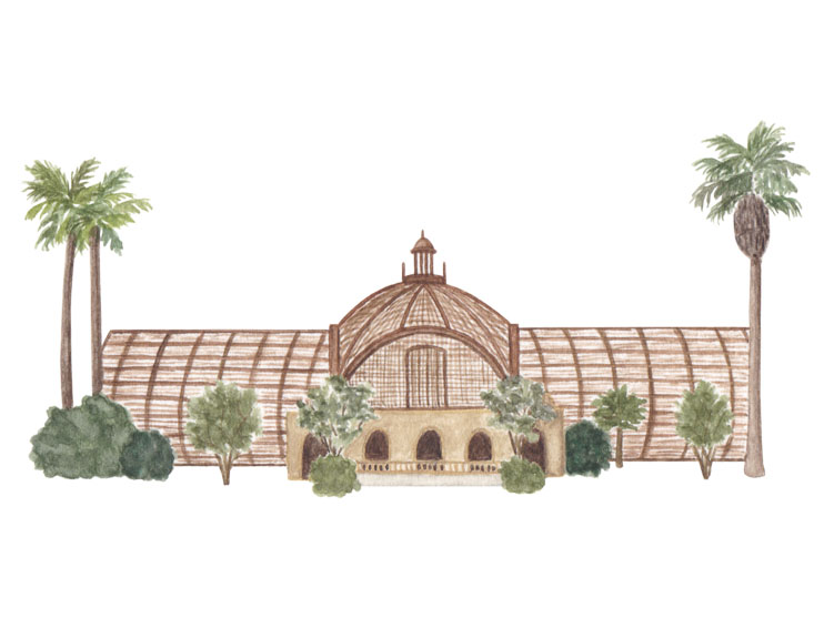 amy zhang creative | balboa park illustration | san diego travel guide