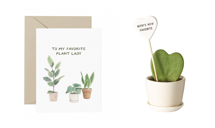 amy zhang creative | happy mother's day card | favorite plant lady mother's day card