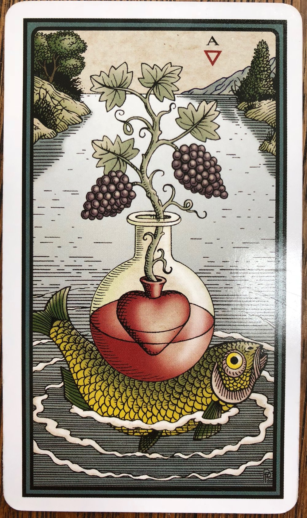 Ace of cups hermetic tarot