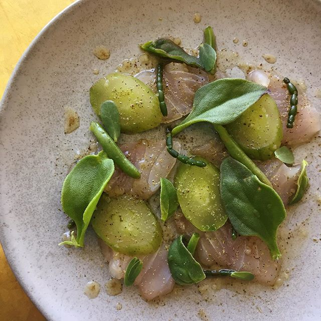 Citrus-cured blue-eye trevalla, lemon myrtle, sea herbs 🌱🐟#newmenu #springishere #sydneyeats