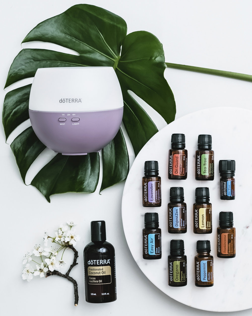 The Home Essentials Kit - Includes 15ml bottles of:PeppermintLavenderTea TreeOreganoFrankincenseLemonOn GuardDigestZenEasy AirIce Blue (5ml)Plus a Diffuser