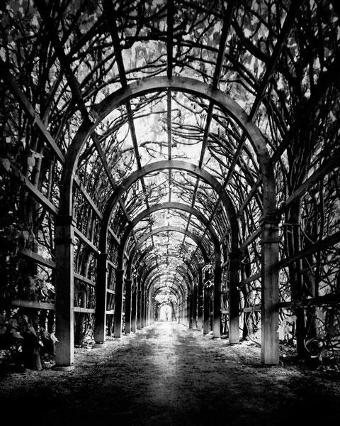 Through III by Nune Karamyan