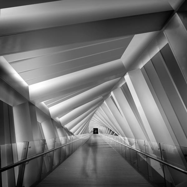 Bridge Study 4