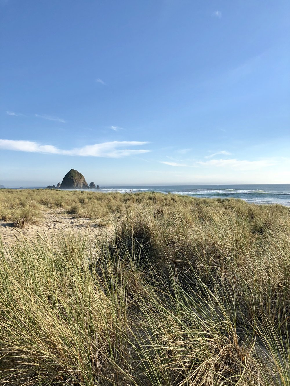 Cannon Beach:  This sleepy little beach town is known for its famous Haystack Rocks and is the perfect getaway spot. The town strictly enforces regulations that limit large chains and restaurants and, instead, residents and visitors support local businesses and cafes.