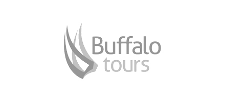 buffalo-tour-logo-hoathi.jpg