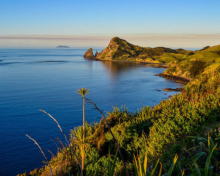 COROMANDEL COASTAL WALKWAY   Start at Stony Bay   Walk the Coromandel Coastal Walkway & discover beautiful beaches, quiet nature and twinkling bays.