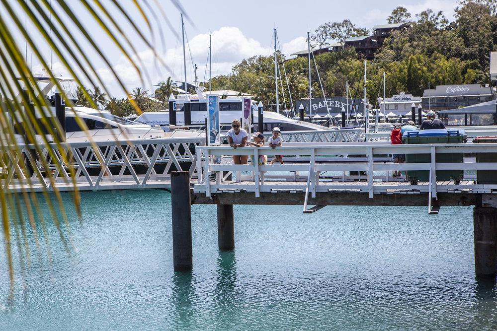 harbour_hamilton.jpg