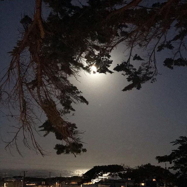 Supermoon over San Francisco https://www.josephinespilka.com/blog-posts/inspiring-force