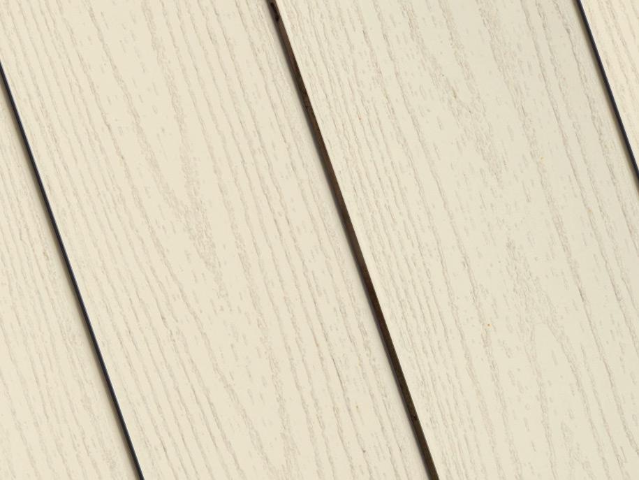 Silver Birch*
