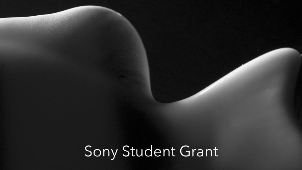 Sony Student Grant