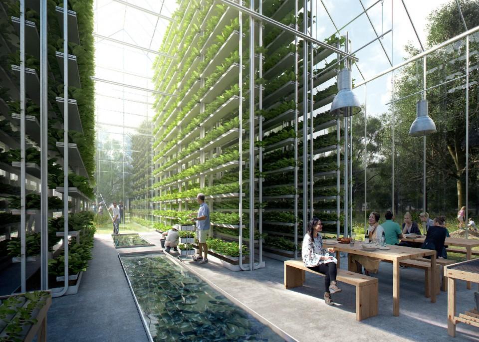 Hi-tech future farming. Photo:  99% Invisible