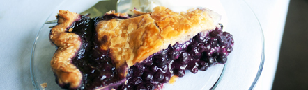 blueberry_pie_442.jpg