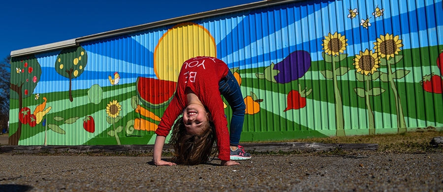murals-2-8-24.jpg