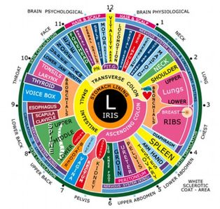 iridology-from-google.jpg